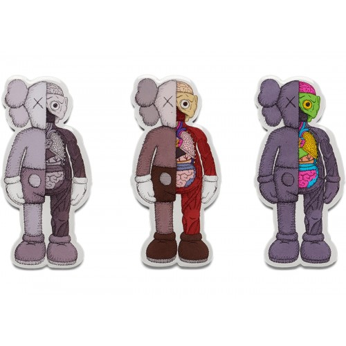 KAWS Dissected Magnet NGV