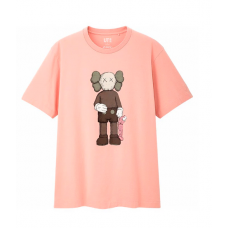 KAWS X Uniqlo Brown Companion SS19