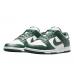 Nike Dunk Low Michigan State
