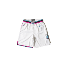 Nike Miami Swingman Shorts City Edition