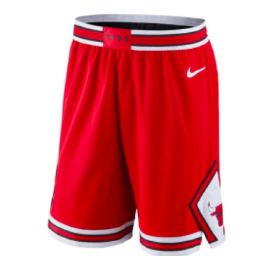 Nike Chicago Bulls Icon Edition